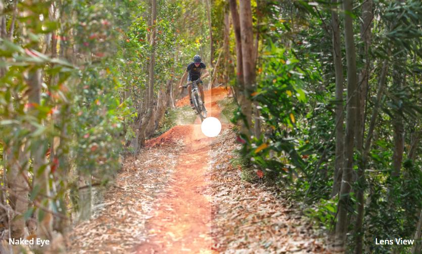 Lunette Prizm Trail Oakley